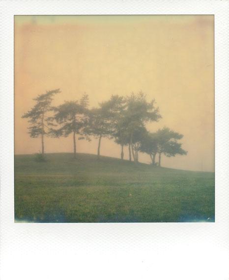 polaroid-vincent-gabriel-paysage-02