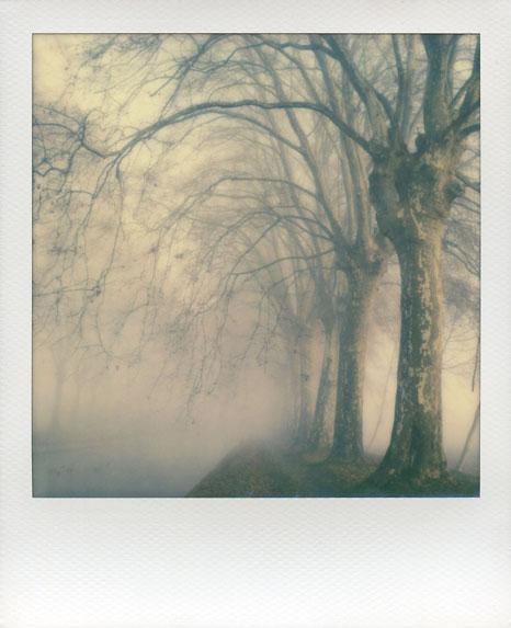 polaroid-vincent-gabriel-paysage-08