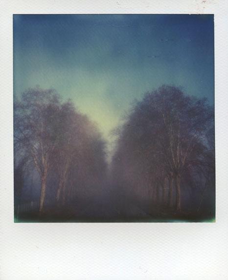 polaroid-vincent-gabriel-paysage-09