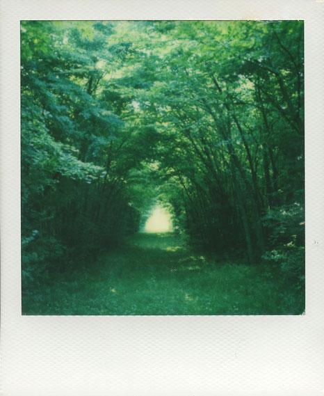 polaroid-vincent-gabriel-paysage-48