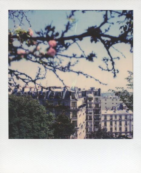 Polaroid Vincent Gabriel Paris 10