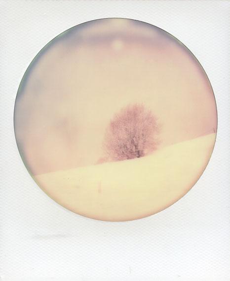 polaroid-vincent-gabriel-paysage-01