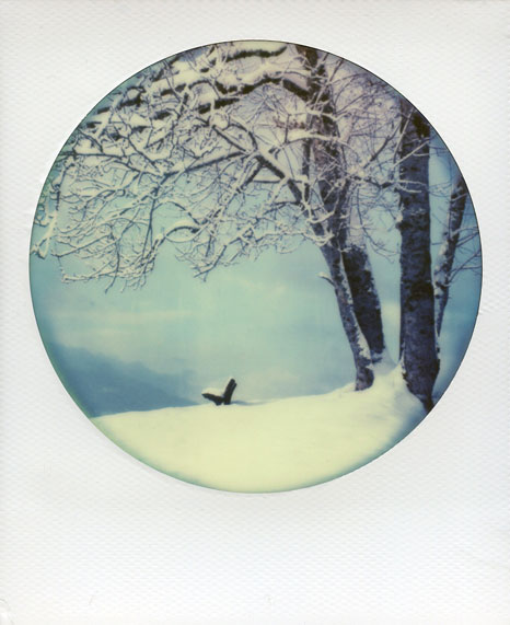 polaroid-vincent-gabriel-paysage-03