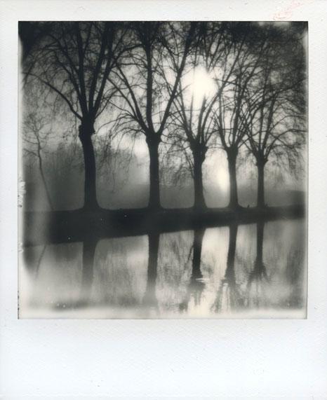 polaroid-vincent-gabriel-paysage-41