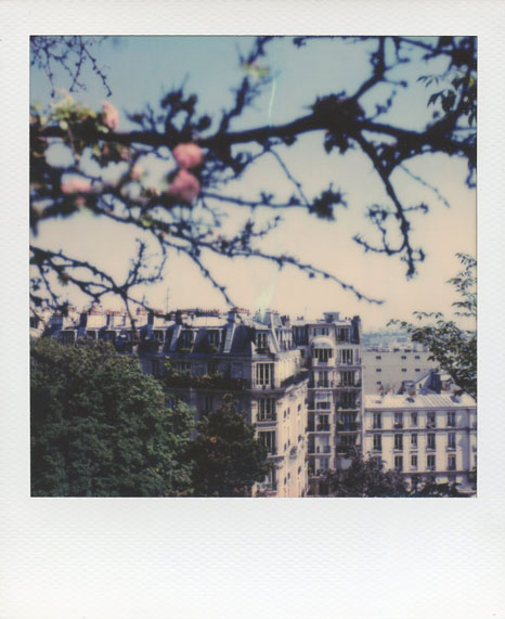 Polaroid Vincent Gabriel Paris 10